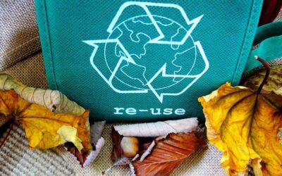 Waste and recycling collections Christmas 2020