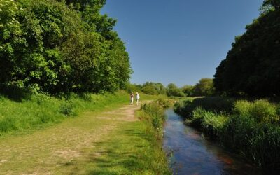 Update from Cornwall Council re Hayle River Community Project
